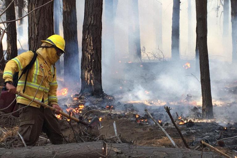 Herramientas tecnológicas abren nuevas alternativas de prevención de incendios para el mundo rural